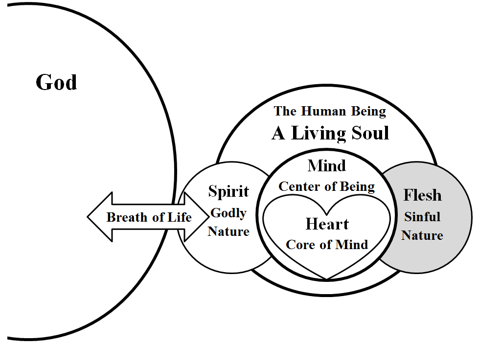 understanding the meaning of being poor in spirit The expression you have in mind is how jesus began the sermon on the mount: blessed are the poor in spirit, for theirs is the kingdom of heaven (matthew 5:3) being poor in spirit is different than being poor in body the later kind of poverty exists when there is not enough money.