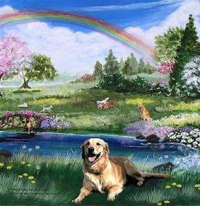 doggie_heaven-767087[1]